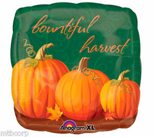 Autumn Bountiful Harvest Balloon